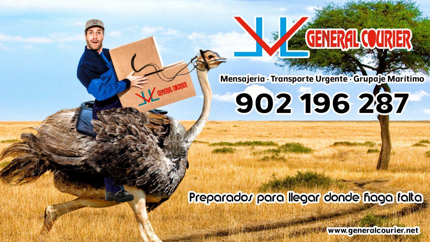Nico Trujillo - Agencia de Publicidad
